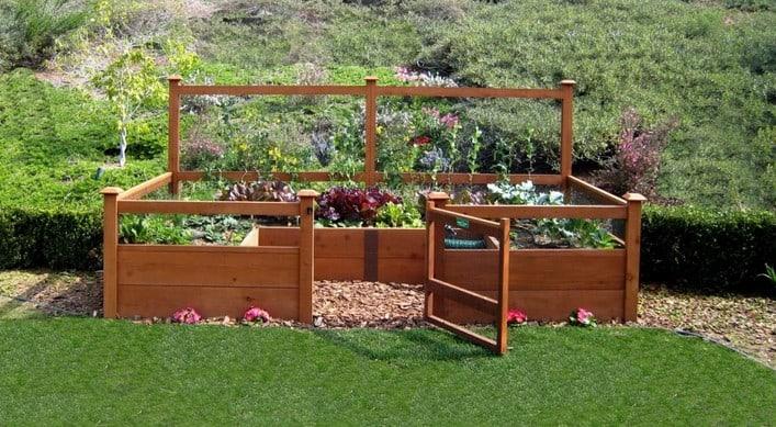 summer autumn transition raised vege garden