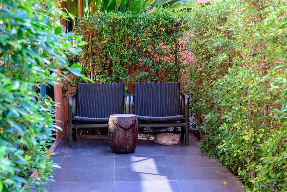 Australian landscaping trends