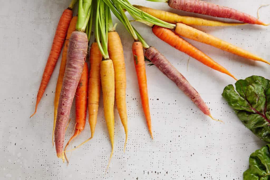 soil-free gardening