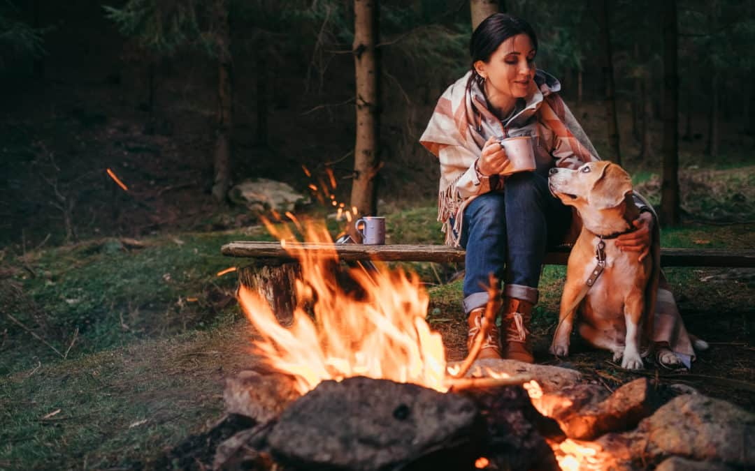 Camping With Pets: The Do's and Dont's