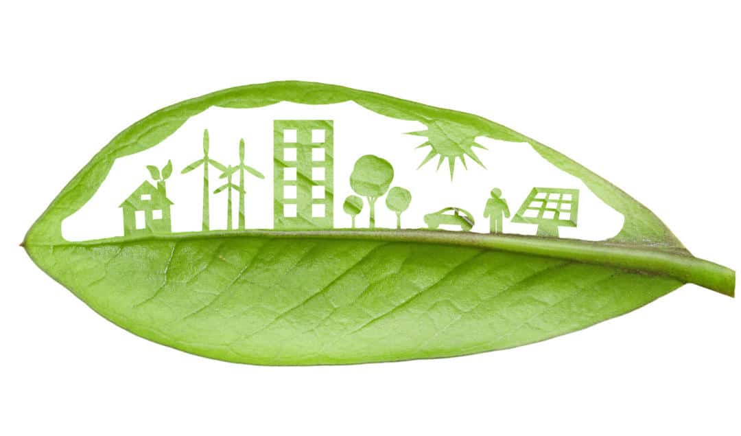 7 Ways To Create A Greener Home… environmentally that is