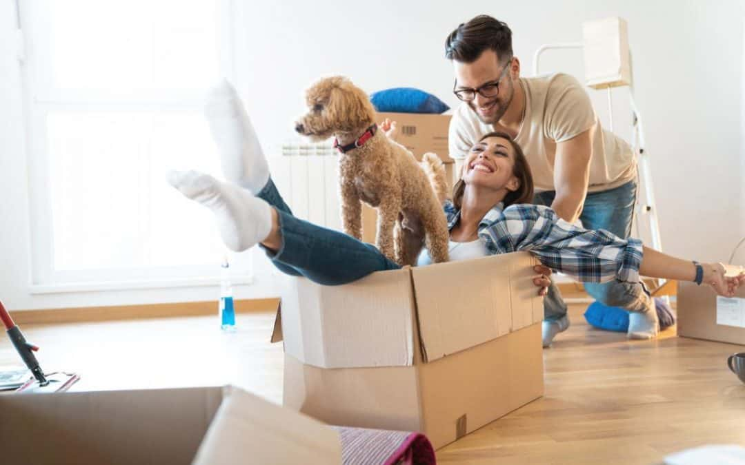 House Moving Stress And How To Avoid It