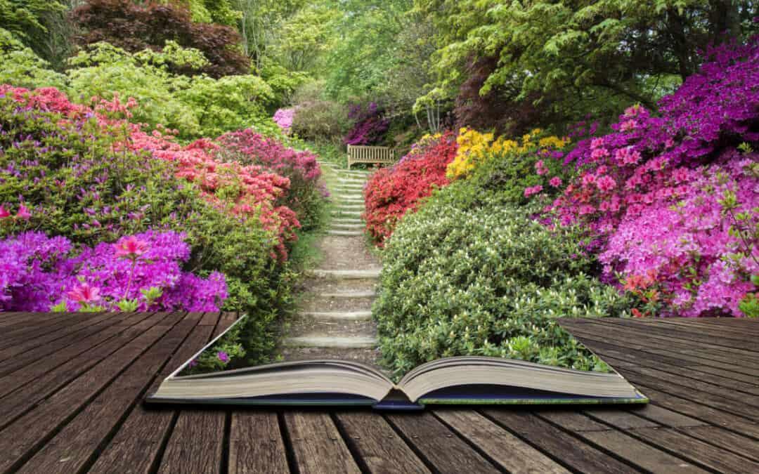 DIY Ideas for Beautiful Garden Paths