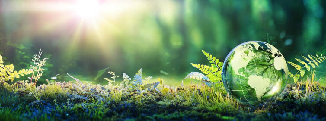 'How to Achieve a Sustainable Living Environment